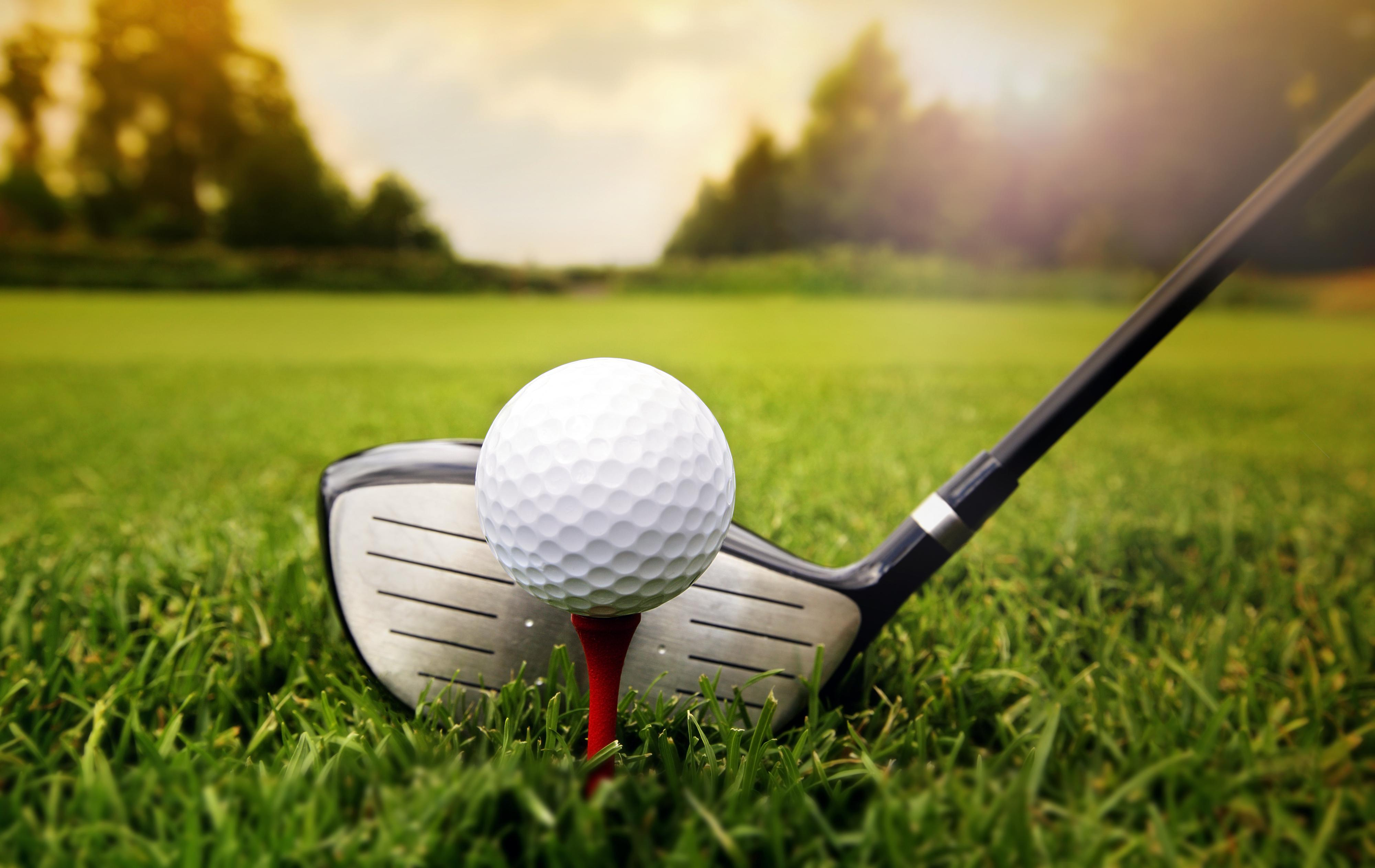 30th Annual Dr. D.R. Davis Golf Classic